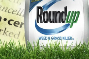Unanimous Jury – Roundup Causes Cancer