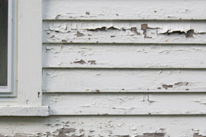 Lead Poisoning Remains a Major Concern for America's Most Vulnerable Inhabitants